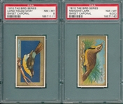 1908-57 Lot of (6) Animals & Birds, PSA