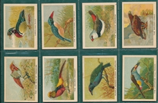 1930s Birds, Beasts & Fishes, CBat, Lot of (20) Pop-Ups