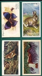 1930s Animals, Birds & Butterflies, Lot of (105)